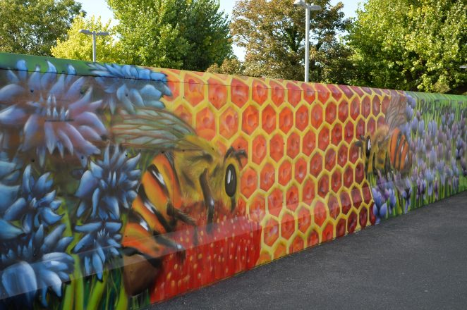 Promoting bee conservation at Falmer | ©Tony Mould: My Brighton and Hove