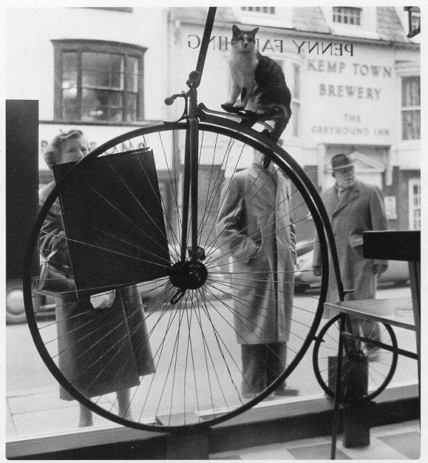 Re: penny farthing coffee shop