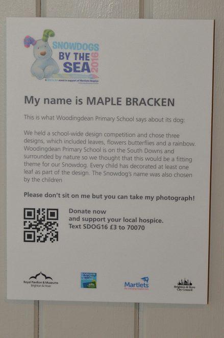 Maple Bracken