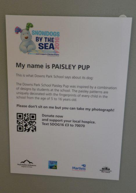 Paisley Pup