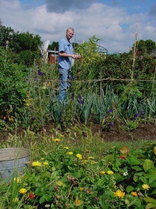 Tony Marshall working his Weald Avenue plot | Photo by Simon Tobitt
