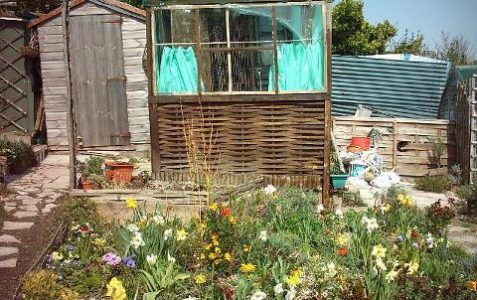 Val's allotment