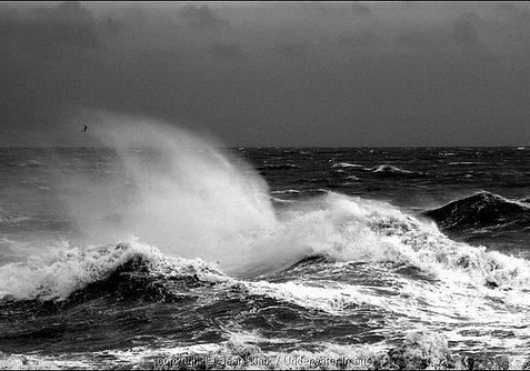 Storm 14 | Sean Clark / www.underwaterimage.co.uk