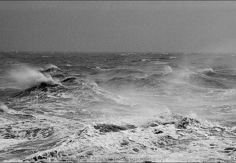 Storm 4 | Sean Clark / www.underwaterimage.co.uk