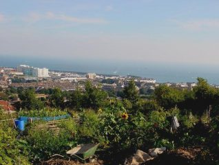 View across the Craven Vale site, Brighton Marina in background | Photo by Simon Tobitt