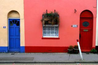 A window box with attitude | Photo by David Gray