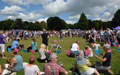 Pride Annual Dog Show