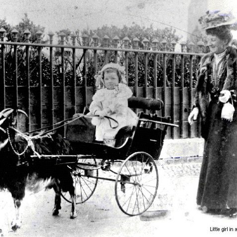 Little girl in a goat cart, 1907 | Image from the 1994 My Brighton museum exhibit