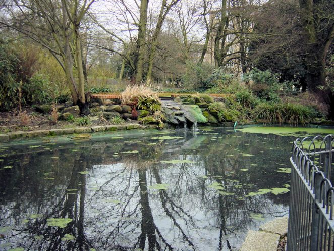 St Ann's Well Gardens pond   Photo by Brian Dungate