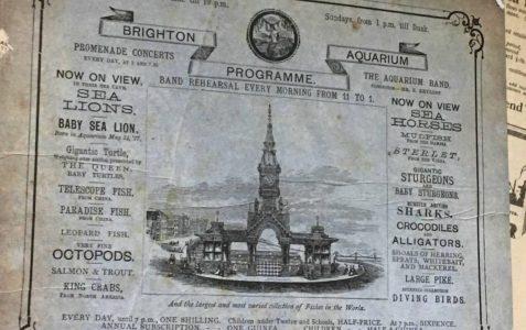 Brighton Aquarium Programme