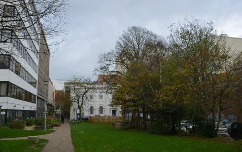 Brighthelm Centre Rest Gardens