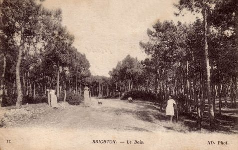 Brighton le Bois