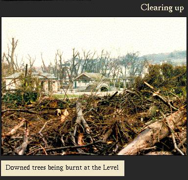 Downed trees being burned at The Level | Image from the 'My Brighton' exhibit