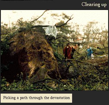 Picking a path through the devastation | Image from the 'My Brighton' exhibit