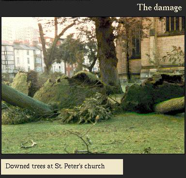 Downed trees at St Peter's church | Image from the 'My Brighton' exhibit