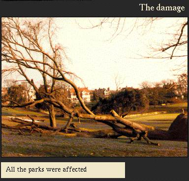 All the parks were affected | Image from the 'My Brighton' exhibit