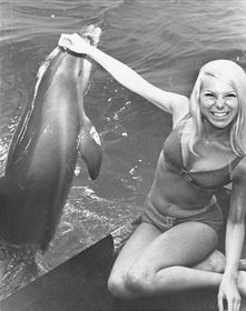 Dolphins 1968/69 | From the private collection of Denise Taylor (Wixey). Reproduced  with kind permission of The Argus