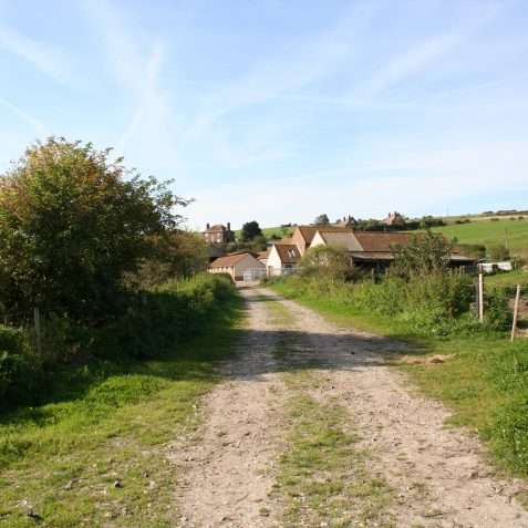 Dyke Farm | Peter Groves