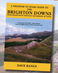 Freedom to Roam Guide to the Brighton Downs