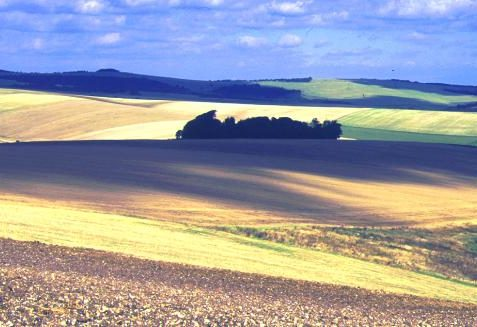 View of the South Downs from The Drove, between <a href=
