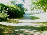 Photograph of a shady path through Dyke Road Park