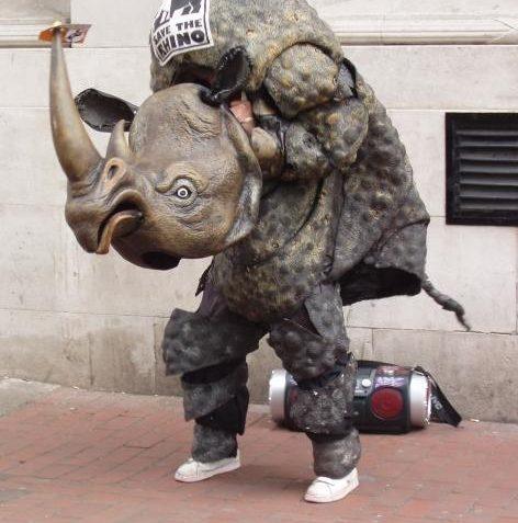Rocking Rhino! | Photo by Tony Mould
