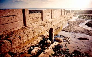 Surviving groynes; click to open a large image | Photo by Sam Flowers
