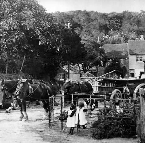 The Grange farmyard c1915 | From the private collection of Jennifer Drury