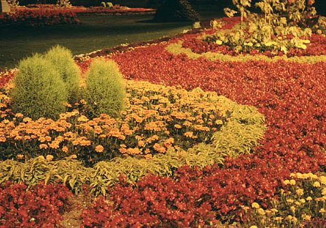 Photo of the 'Gardens of Greeting flowerbeds' in the 1970's | Photograph supplied to website by Ray H., a local photographer, in November 2002