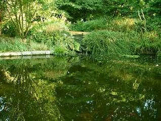 Pond in St Anne's Well Gardens | From a private collection