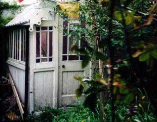 Greenhouse in Trafalgar Terrace | Photo by Pam Blackman