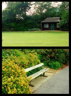 The bowling green and a bench which overlooks it.
