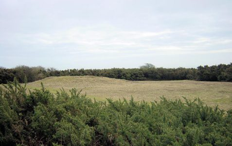 Hollingbury Hillfort