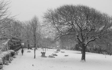 Snow - January 2013