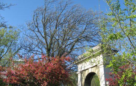 Rest Garden: Dyke Road