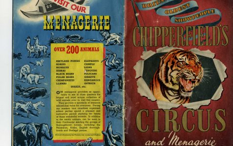 Chipperfield's Circus