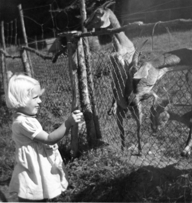 Photographed at Brighton Zoo c1950s | From the private collection of Richard Davies