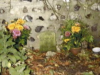 Pets' graveyard, Preston Manor, 1994