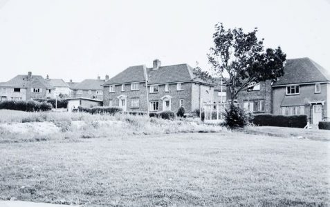 Whitehawk in the 1950s