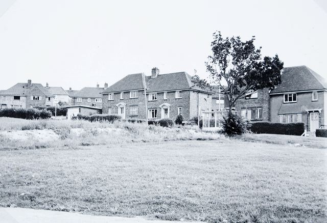 Whitehawk Avenue photographed in 1980 | Image reproduced with kind permission of The Regency Society and The James Gray Collection