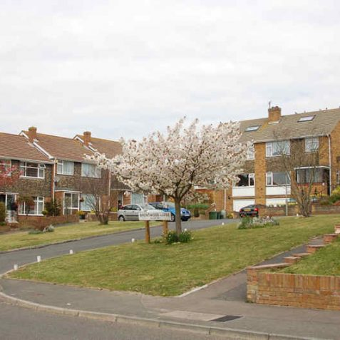Brentwood Close   Photo by Tony Mould