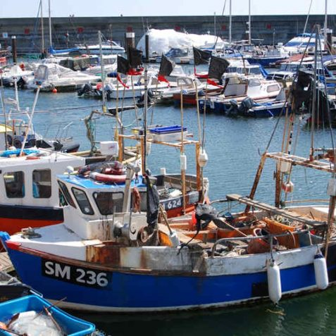 Local boats, Brighton Marina | Photo by Tony Mould