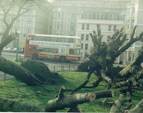 The gardens in the Old Steine following the 1987 storm | Picture reproduced with permission from Brighton History Centre