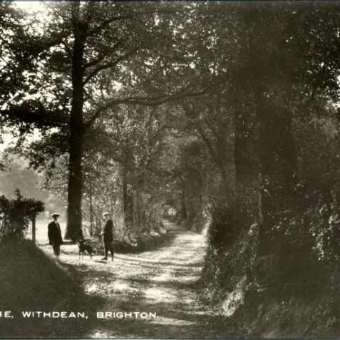 Peacock Lane Withdean c.1900 | From the private collection of Tony Drury