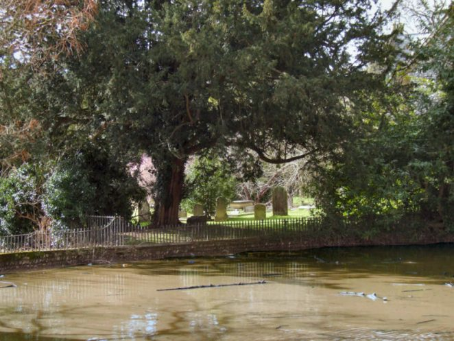 Pond by the churchyard | Photo by Jennifer Drury