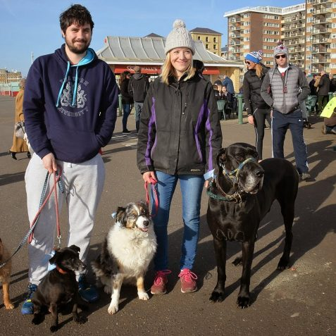 Pooches on the prom | ©Tony Mould: all images copyright protected