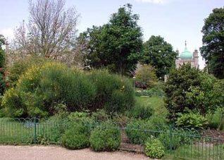 Royal Pavilion Gardens   Photo by John Desborough