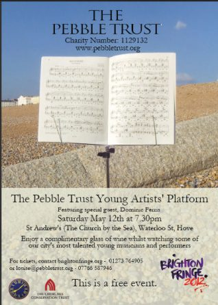 The Pebble Trust Young Artists' Platorm