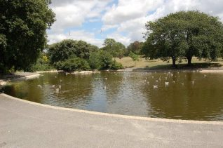 Queens Park lake   Photo by Tony Mould