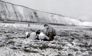 Rockpooling at Blackrock:click on photo to open a large version | From the private collection of Clive Custance
